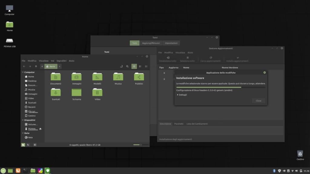 tema scuro attivo in Linux Mint