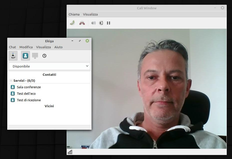 Schermata di Ekiga in Linux Mint
