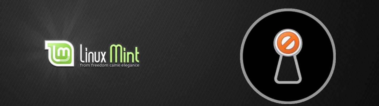 linux mint 20 ulyana senza snap